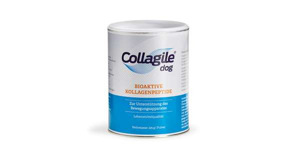 Collagile dog - Bioaktive Kollagenpeptide