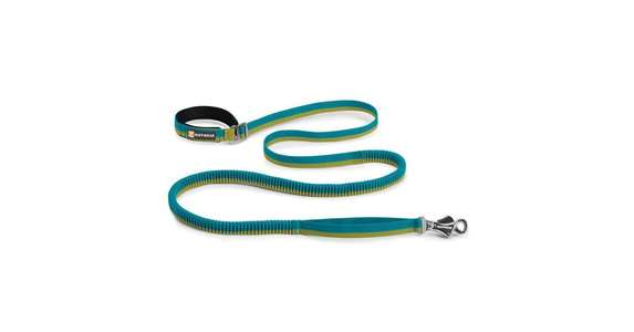 Leine Roamer Leash